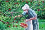 Patricia Eldridge ---Apple gathering 13 x 19