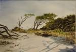 "Al Phillips ""Tybee Island Driftwood"""