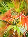 "Vicki Monette--""Tea Palms"