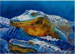 Gators ©