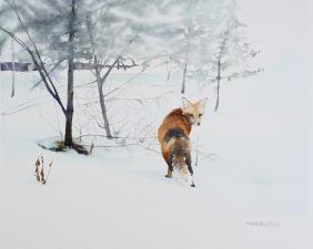 Brenda Beck Fisher, Winter Visitor