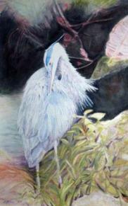 Florene S. Galese, Preening Heron