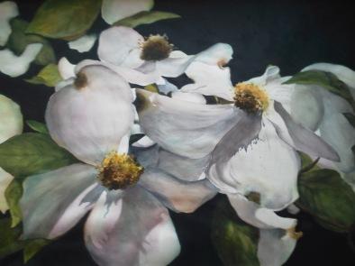 Mary Ann Schaff, Dogwood