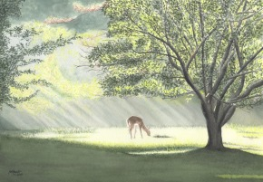 ROGERS SOPHIE REPOLT Morning Mist
